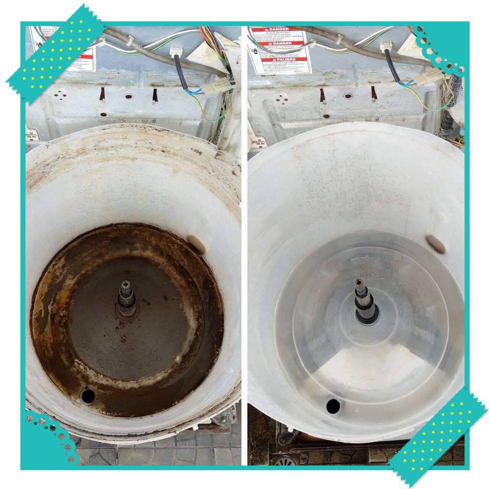 黴菌、塵蟎、過敏一次清除:洗衣機、冷氣清洗