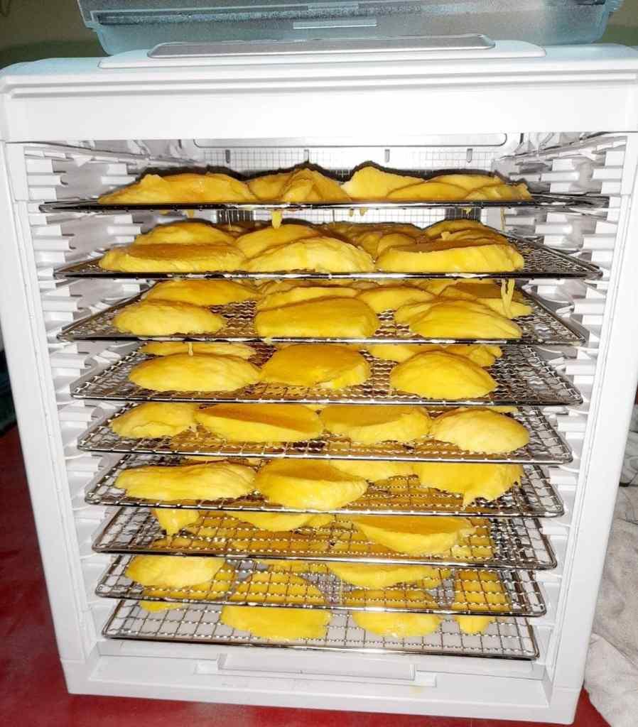 自製芒果乾